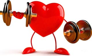 Сердце надо тренировать. Пептиды для сердца.