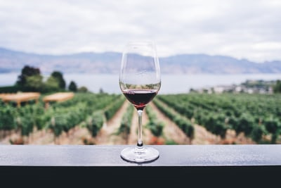 красное вино - польза для здоровья и вред
