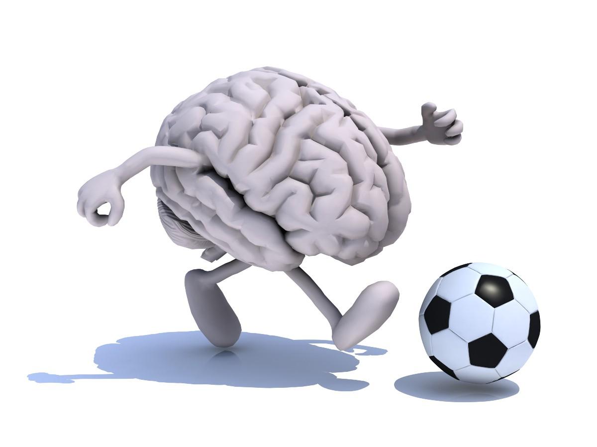Мозг спортсмена