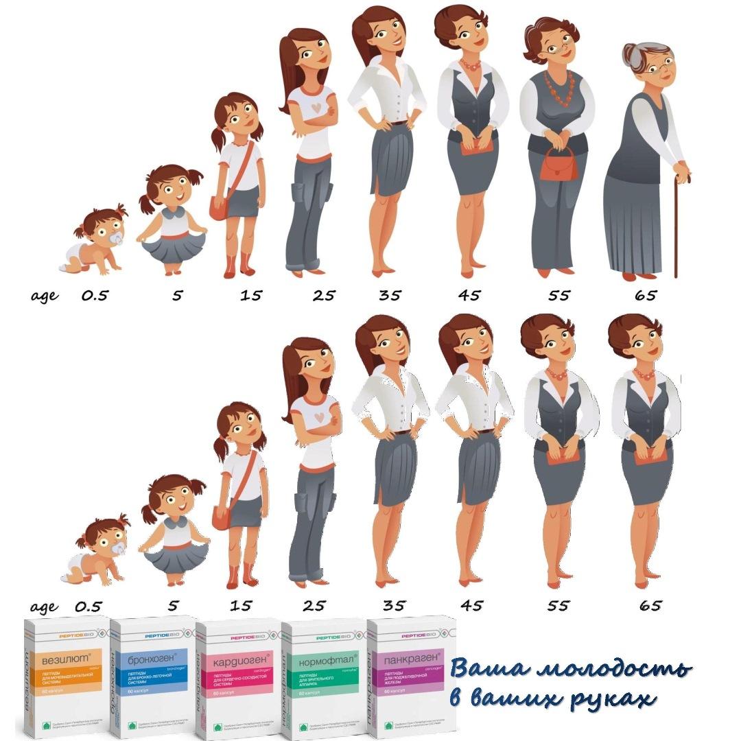 Курсы пептидов для мужчин и женщин