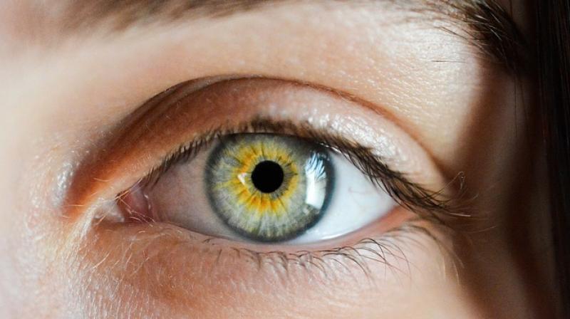 Плохое зрение, лечение с Нормофталом