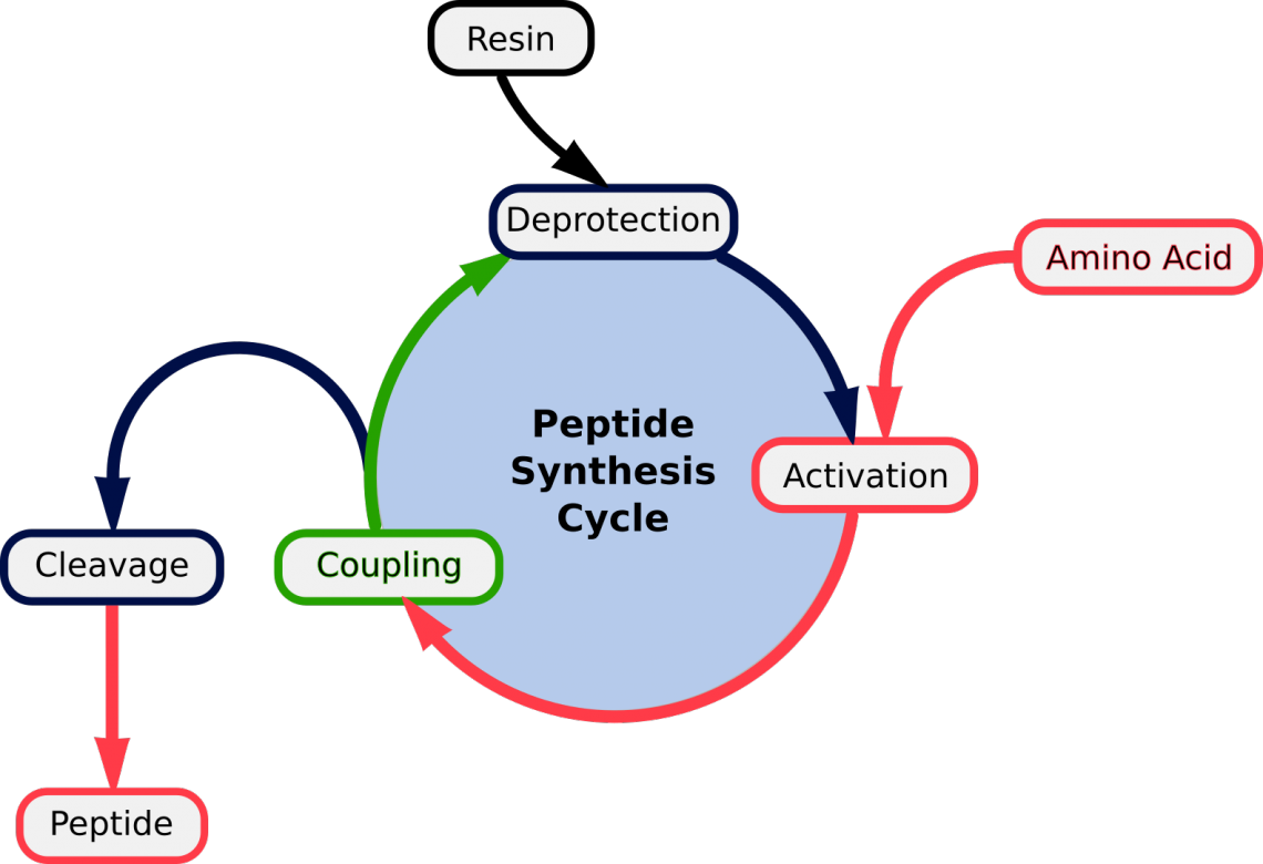 Синтез коротких пептидов