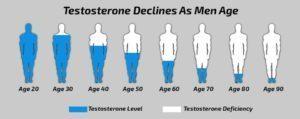 с возрастом тестостерон снижается